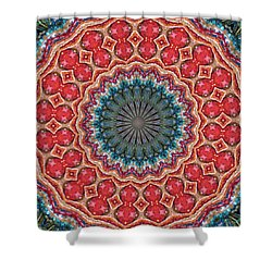 The Girl With Kaliedoscope Eyes Shower Curtain by Alec Drake