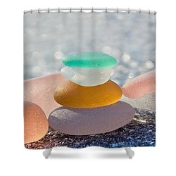 The Glass House Shower Curtain by Barbara McMahon