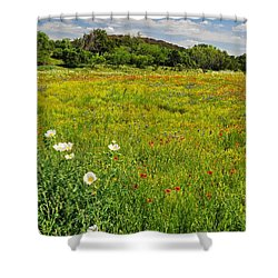 The Glory Of Spring Shower Curtain by Lynn Bauer