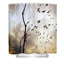The Gods Laugh When The Winter Crows Fly Shower Curtain by Bob Orsillo