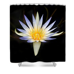 The Golden Chalice Shower Curtain