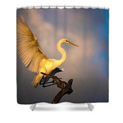 The Golden Egret Shower Curtain