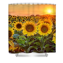 The Golden Hour Shower Curtain by Jill Van Doren Rolo
