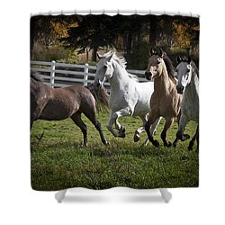 The Goldendale Four Shower Curtain by Wes and Dotty Weber