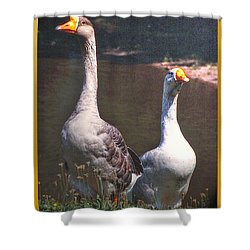 The Goose And The Gander Shower Curtain by Patricia Keller