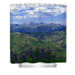 The Grand And Lupines Shower Curtain