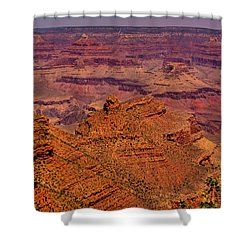 The Grand Canyon Iv Shower Curtain by David Patterson