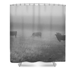 The Graze Shower Curtain