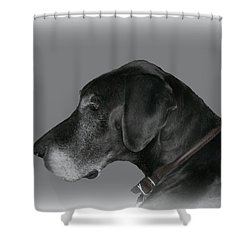The Great Dane Shower Curtain by Barbara S Nickerson