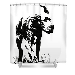 The Great Dane Shower Curtain