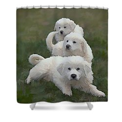 The Great Pyranise Pups  Shower Curtain by Bonnie Willis