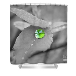 The Green Pearl Shower Curtain by Patti Whitten