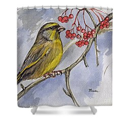 The Greenfinch Shower Curtain by Angel  Tarantella
