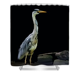 The Grey Heron Shower Curtain by Brian Roscorla