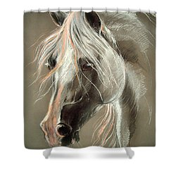 The Grey Horse Soft Pastel Shower Curtain by Angel  Tarantella