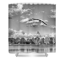 The Gull Shower Curtain by Howard Salmon