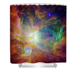 The Hatchery  Shower Curtain by Jennifer Rondinelli Reilly - Fine Art Photography