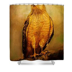 The Hawk Shower Curtain by Jean Cormier