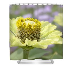 The Heart Of.... Shower Curtain by Kim Hojnacki