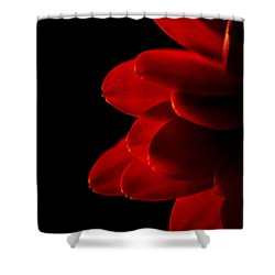 The Heat Of Your Gaze Shower Curtain