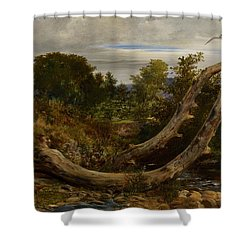 The Heron Disturbed Shower Curtain by Richard Redgrave