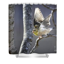 The High Notes Shower Curtain