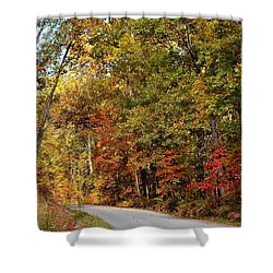 The High Road Shower Curtain by Deena Stoddard