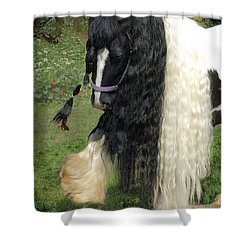 The Hitcher Shower Curtain