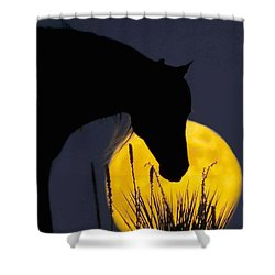 The Horse In The Moon Shower Curtain