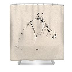 The Horse Sketch Shower Curtain by Angel  Tarantella