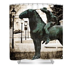 The Horseman Shower Curtain by Mary Machare