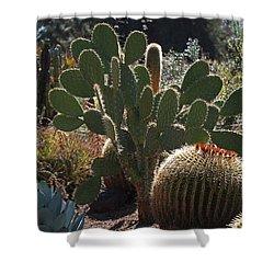 The Huntington Desert Garden Shower Curtain by Rona Black