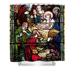 The Incarnation - Madonna And Child Shower Curtain by Kim Bemis