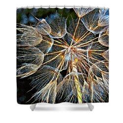 The Inner Weed Oil Shower Curtain by Steve Harrington