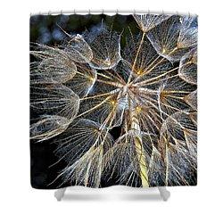 The Inner Weed Paint Shower Curtain by Steve Harrington