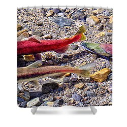 Shower Curtain featuring the photograph The Interloper by Jim Thompson
