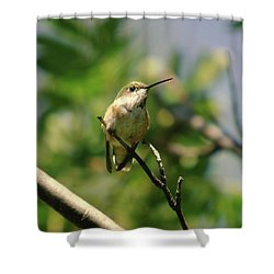 The Intimidating Watchman Shower Curtain by Jeff Swan