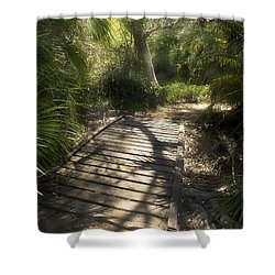 Shower Curtain featuring the photograph The Journey Along The Path Comes With Light And Shadows by Lucinda Walter