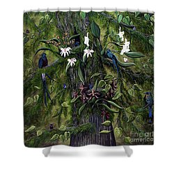 The Jungle Of Guatemala Shower Curtain