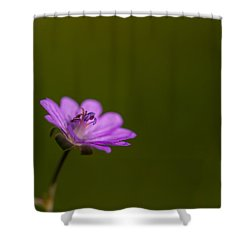 The Junior Is On The Way  Shower Curtain by Andreas Levi