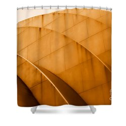 The K Shower Curtain