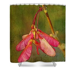 The Keys To Springtime Shower Curtain