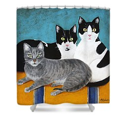 The Kids Shower Curtain by Marna Edwards Flavell