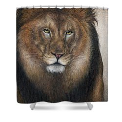 The King Grows Weary  Shower Curtain by Pat Erickson