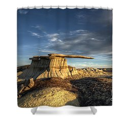 The King Of Wings Shower Curtain by Bob Christopher