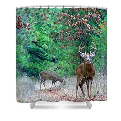 The King Shower Curtain by Thomas Young