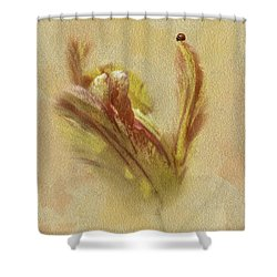 The Lady And The Parrot Tulip Shower Curtain by Diane Schuster
