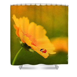 The Lady Bug Shower Curtain by Darren Fisher