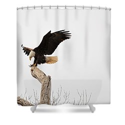 The Landing Shower Curtain by Bonfire Photography