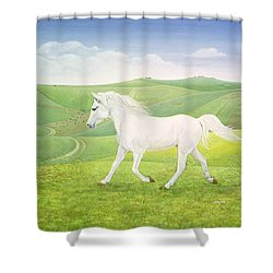 The Landscape Horse Shower Curtain by Ditz
